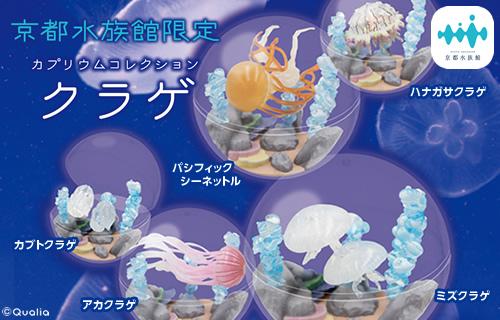 京都水族館限定 カプリウムコレクション クラゲ