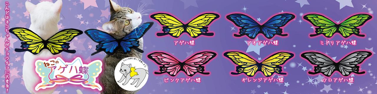 ねこのアゲハ蝶