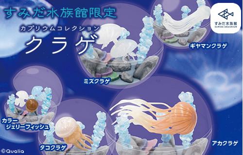 カプリウムコレクション クラゲ