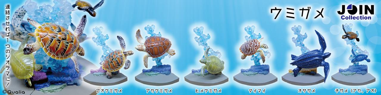 ウミガメ JOIN Collection